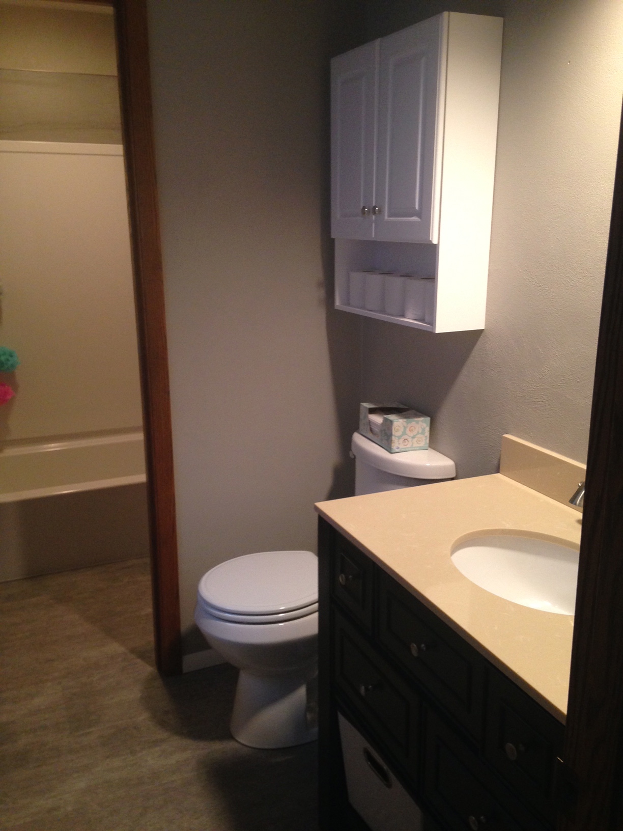 Double Bathroom Remodel 2